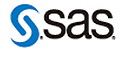 SAS Consulting Partner